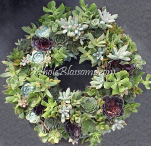 succulent flowers blog Succulent Flowers: The New Bride Favorite for Wedding Bouquets