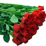 long stem red roses 150x150 Engagement Party with Wholesale Flowers