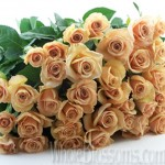 sweetheart roses 150x150 Whole Blossoms Roses