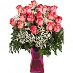 Valentine gift 24 Bicolor Pink Roses
