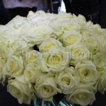wholesale roses long stem 150x150 Whole Blossoms Roses