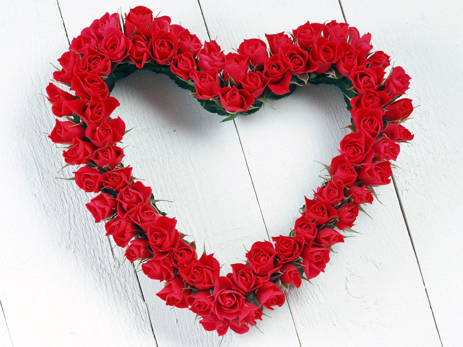 Valentine Day Wholesale Flowers Floral Trends Diy Wedding Ideas