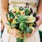 Bouquets using Succulents