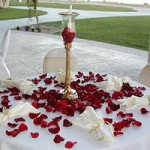 Stunning Decoration with Rose Petals