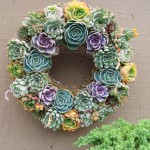 Succulent Wedding Flower
