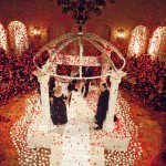 Adorable Wedding Decoration and Rose Petals
