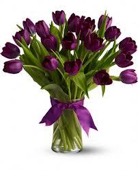 T - Purple