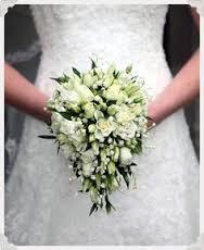 Bouvardia - Wedding