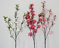 Branches 1 4 Kinds of Branches That Will Help Your Floral Design