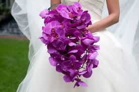 Orchid - Wedding 1