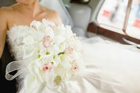 Orchid - Wedding