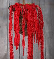 Ama 2 What Do You Know About Amaranthus?