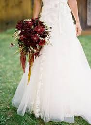 Ama Wedding 1 What Do You Know About Amaranthus?