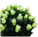 green_wholesale_roses_5