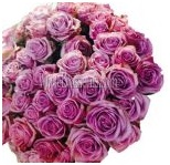 lavender_wholesale_roses_6