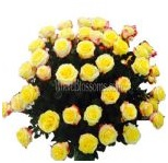 yellow_wholesale_roses_9