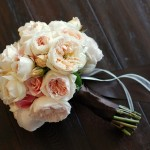 wholesale White roses