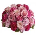 Scented Garden Roses