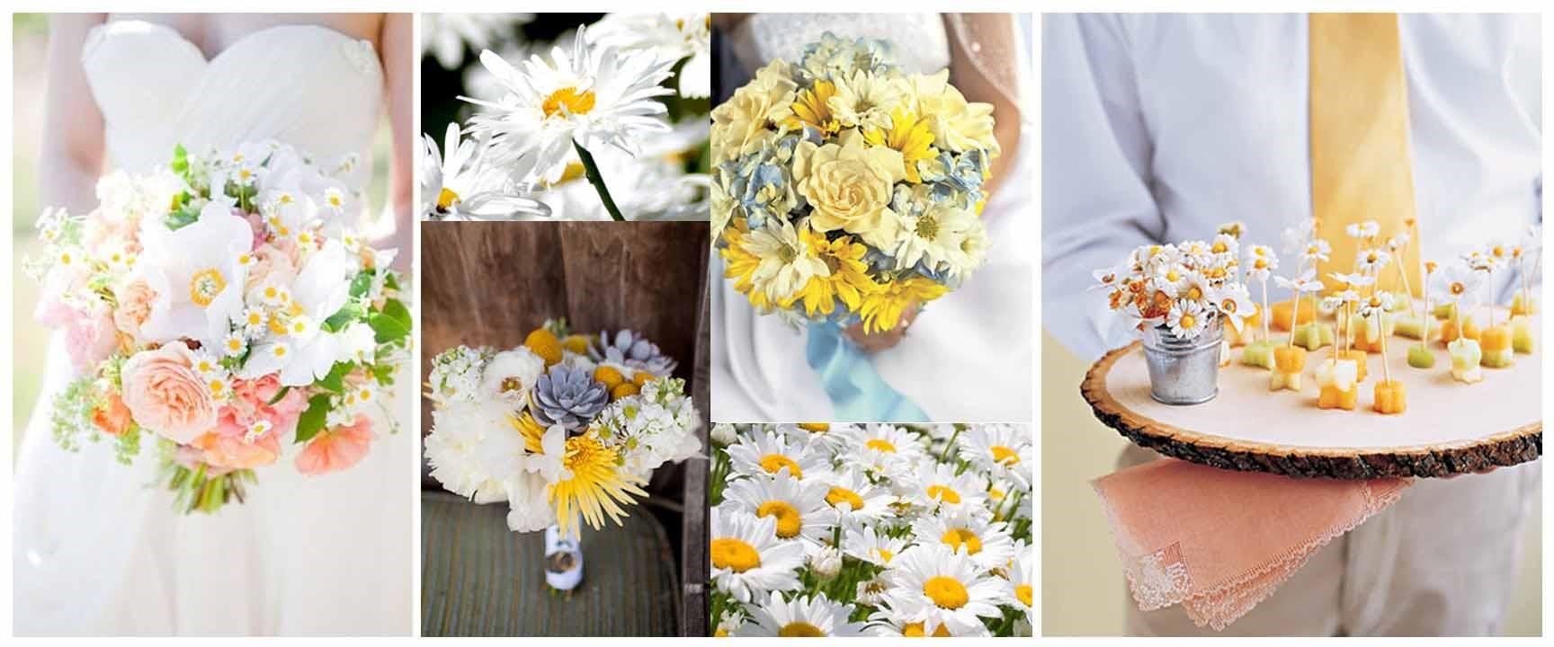 Wedding Flowers Daisy