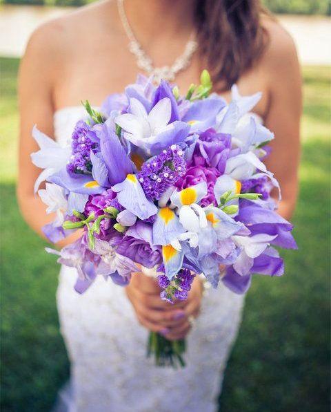 Iris Flowers for sale