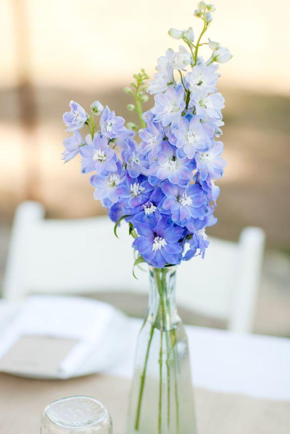 Delphinium Wedding Flowers