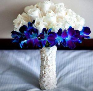 Wholesale Dendrobium Orchids