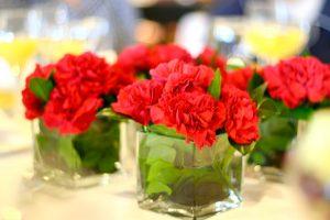 bulk carnations flower