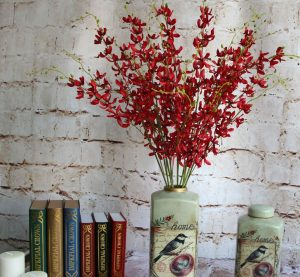 Buy Wholesale Dendrobium Blooms