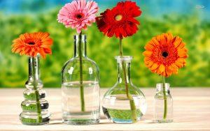 Wholesale fresh flowers wedding