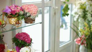 Buy fresh cut flowers online