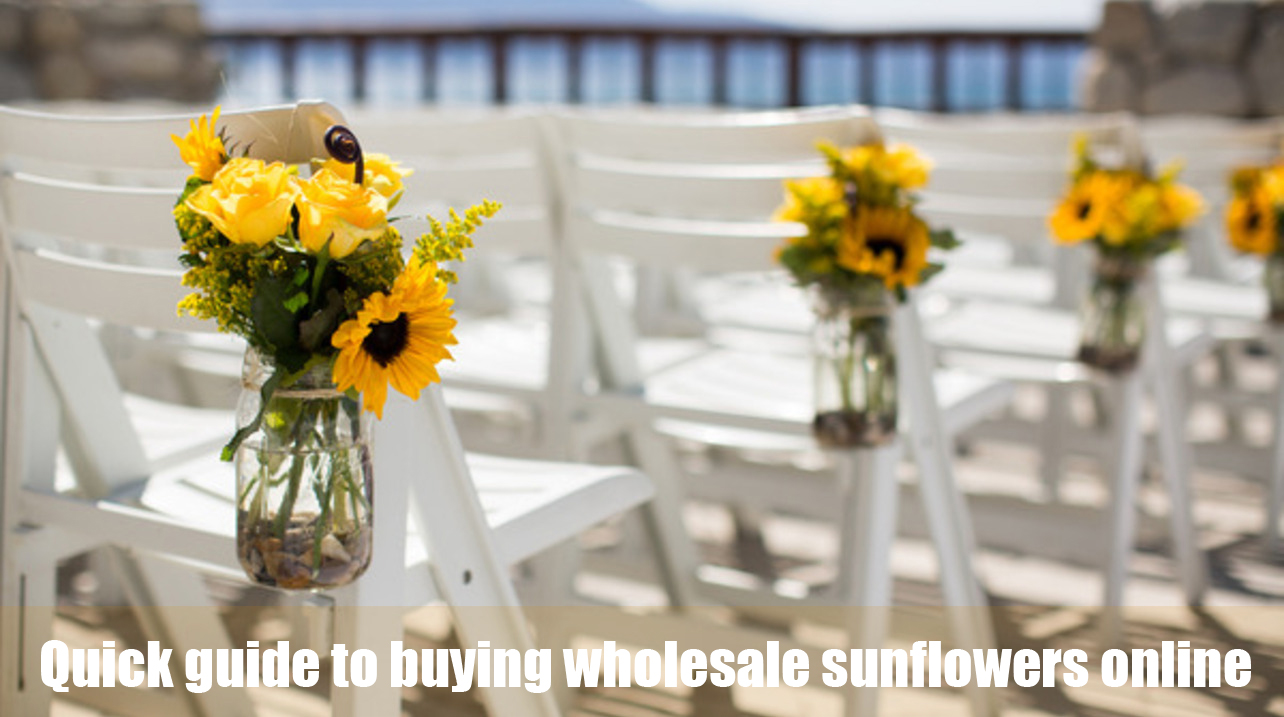 Quick Guide To Buying Wholesale Sunflowers Online