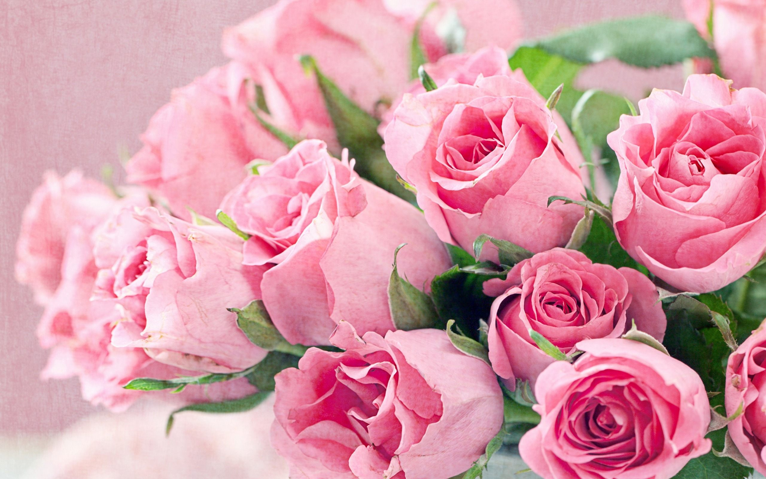Are you running around to buy fresh cut wholesale flowers?