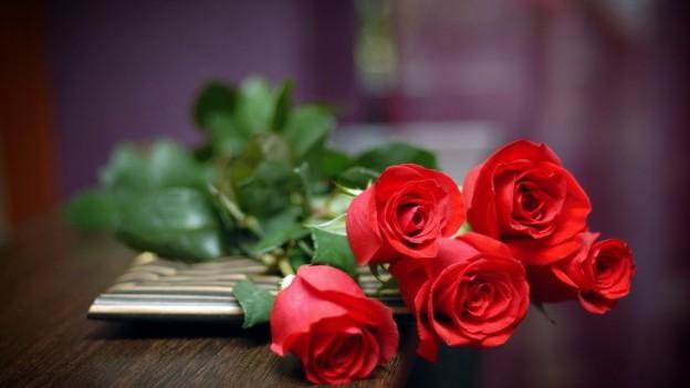 red roses in bulk