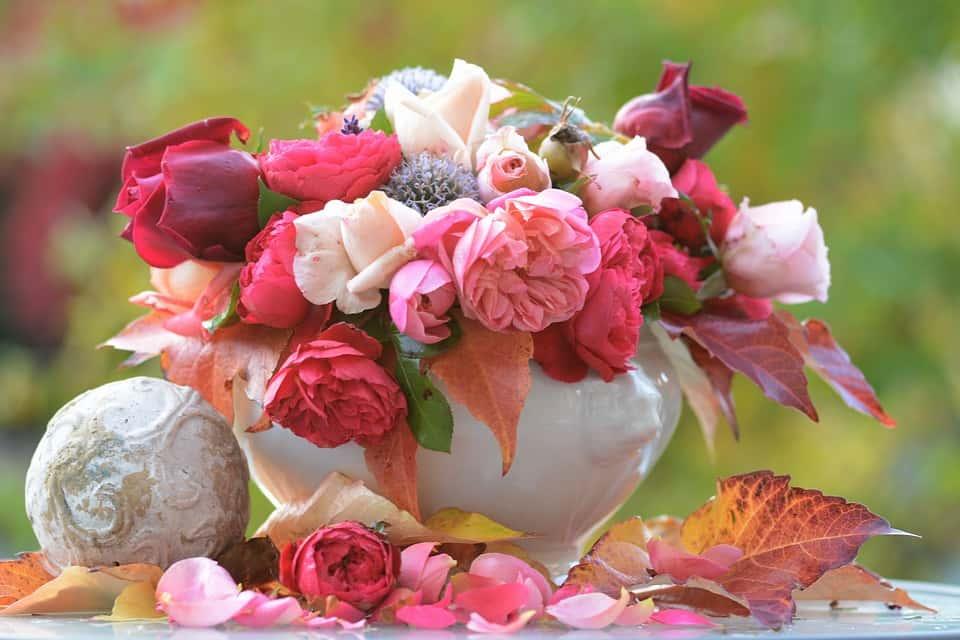 Bulk Roses Online