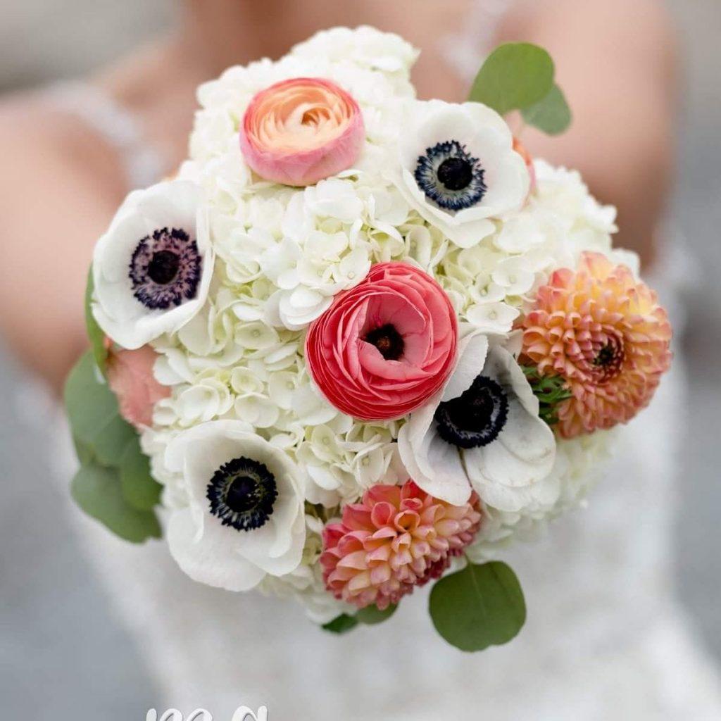 Buy anemone flowers