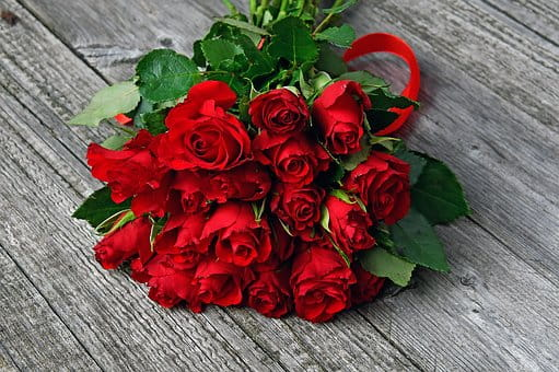 Valentine's day roses