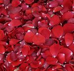 Freeze Dried Red Rose Petals