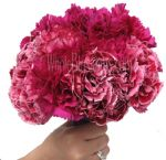 Bulk Carnations - Overnight Delivery