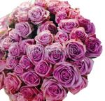 Wholesale Lavender Roses