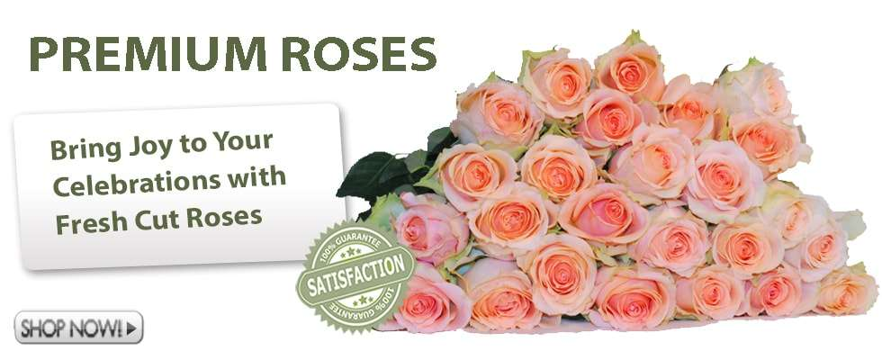 Fresh Cut Roses for Weddings and Events