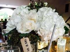 Fresh Cut Hydrangeas for Weddings & Events