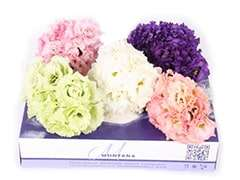 Lisianthus Flower Delivery