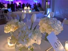 White Hydrangeas for Inspirational Centerpieces