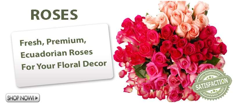 Wholesale Roses Online