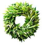 Bayleaf Wreath
