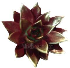 Burgundy / Silver Painted Succulent Flower