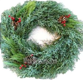 Carolina Mix Wreath