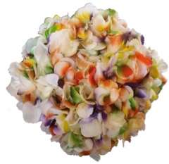 Confetti Yellow Orange Purple Green Hydrangea Cut Flowers