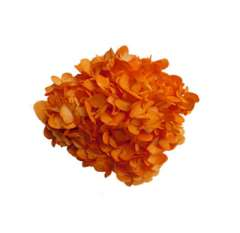 Orange Hydrangea Airbrushed Dark