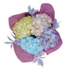 Hydrangea Arrangement Ruscus Easter Flowers